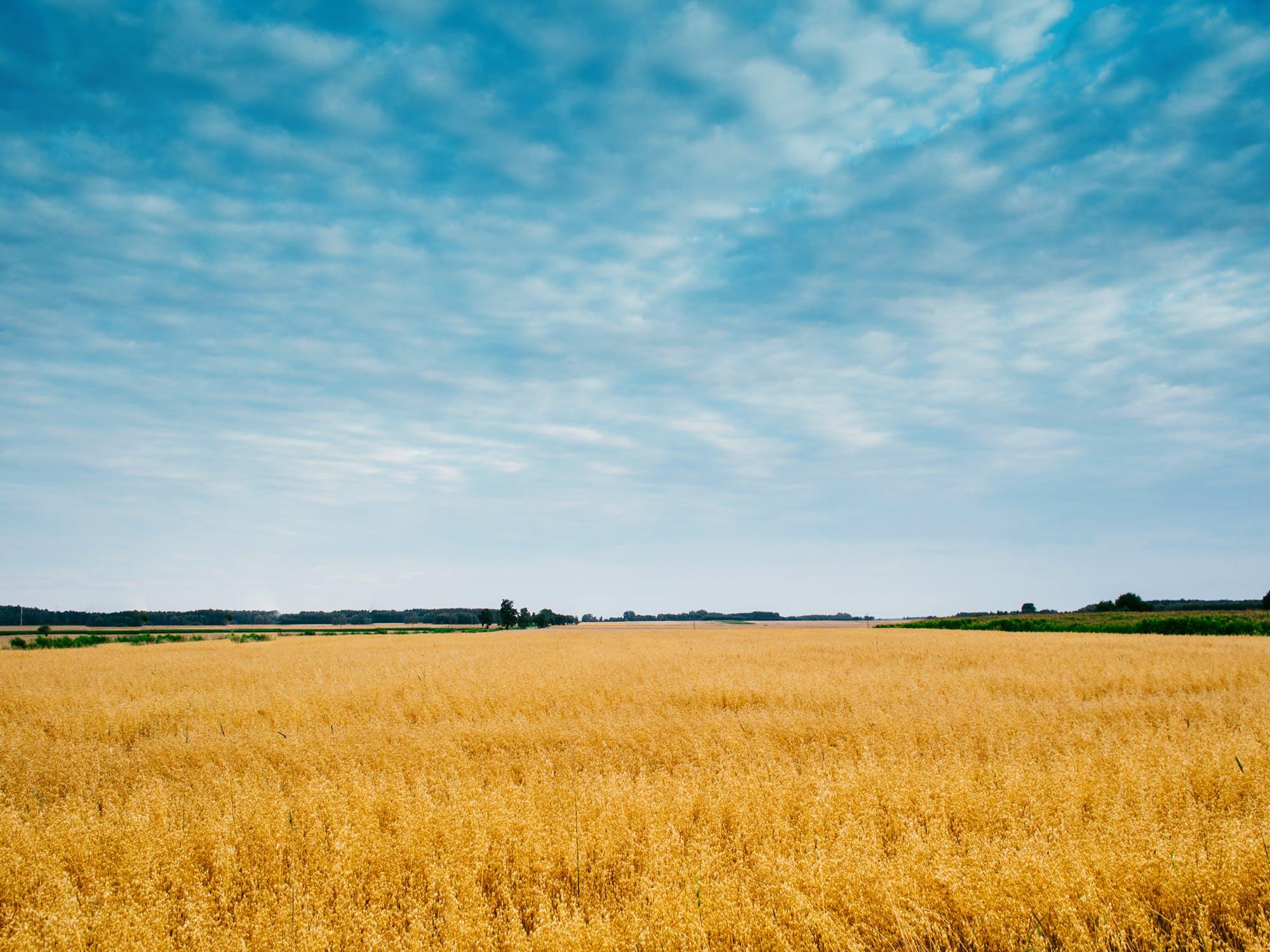 Otvoreno je novo savjetovanje: Zakon o izmjenama Zakona o poljoprivrednom zemljištu