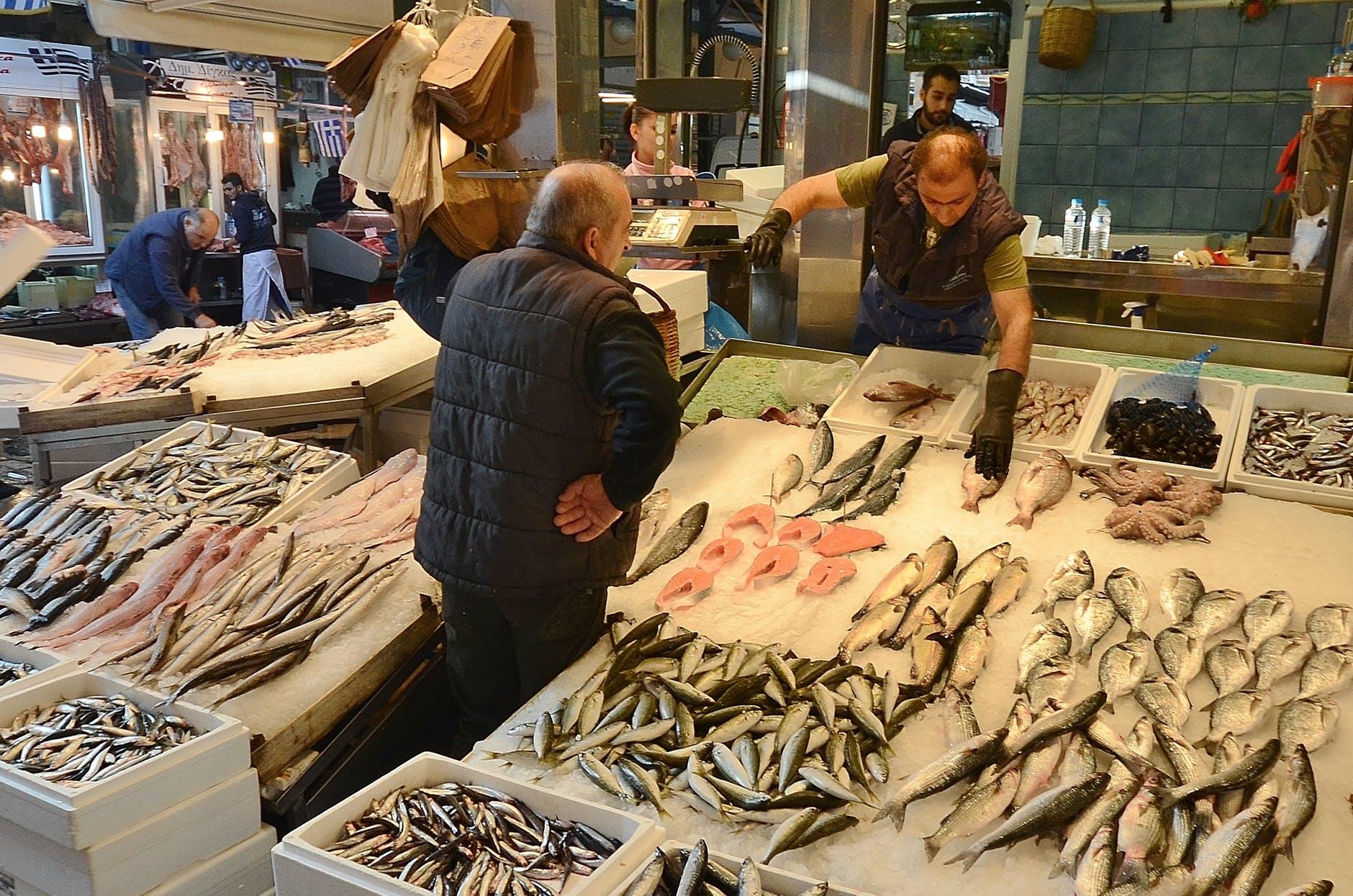 Konstituiran Odbor za ribarstvo – Iskaz interesa za uključenje u rad Odbora