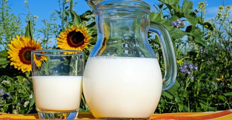 HPK: Ministarstvo će od EU-a tražiti 15 milijuna kuna pomoći za proizvođače mlijeka